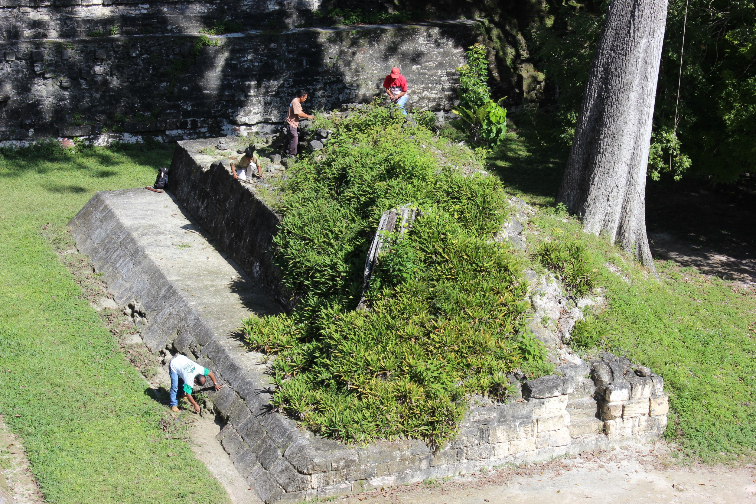 One of the magical parts of Tikal is that they are still working to uncover things.